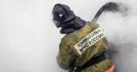 В пожаре в Омской области погиб хозяин дома