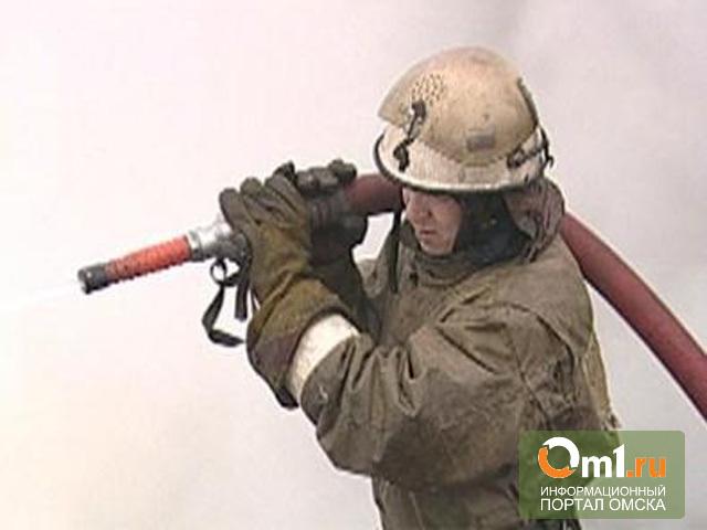 В Омской области пожар унес жизни троих человек