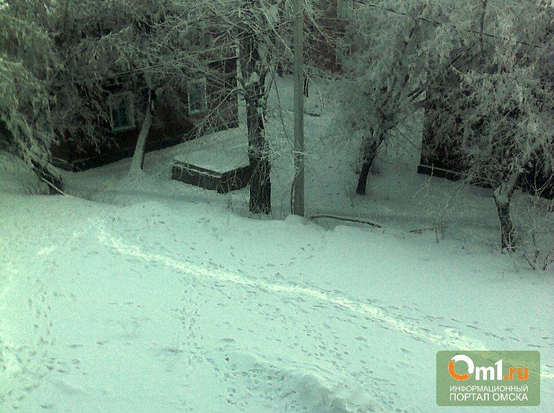 Омским черным снегом заинтересовались в прокуратуре