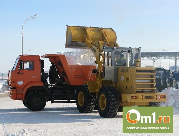 Омская мэрия удивлена количеством выпавшего снега в городе