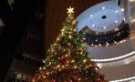 Губернаторские елки в Омске пройдут 28 и 29 декабря