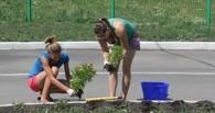 Более 4 500 омских подростков будут трудоустроены на время летних каникул