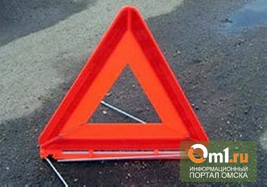 В Омске столкнулись две пассажирские «маршрутки»