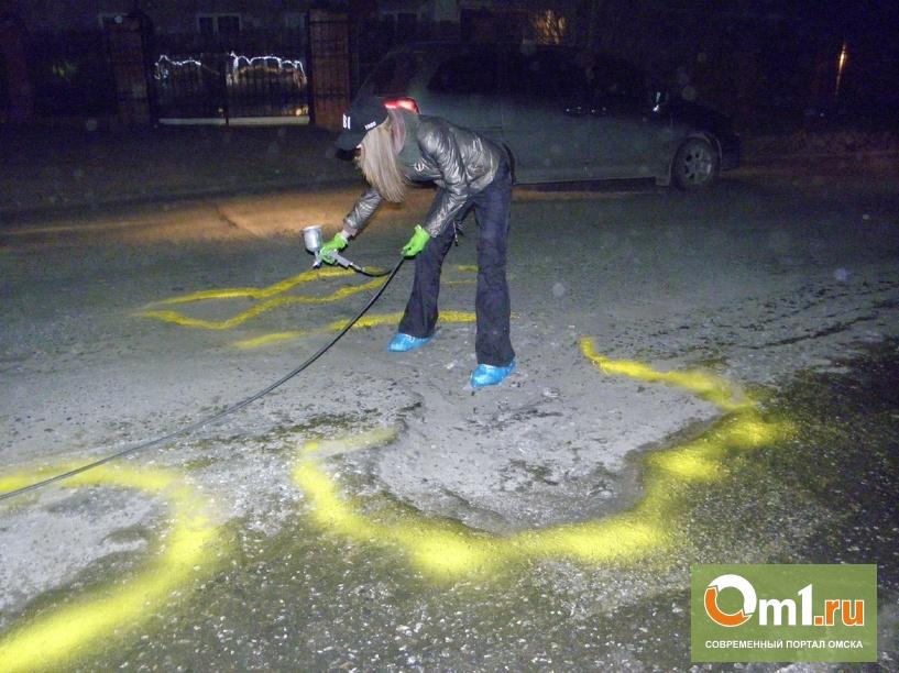 """Омичи выкрасили ямы в желтый и спросили у """"поросенка"""", где дороги(ФОТО+ВИДЕО)"""