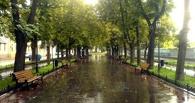 В Омске у Политеха из автопроезда делают новый бульвар