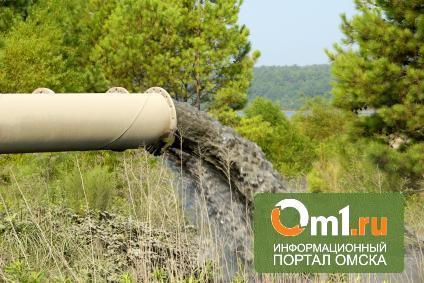 Прокуроры: «ТЭЦ-3» навредила экологии Омска на 1,1 млн рублей