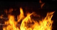 В Омской области на базе отдыха произошел пожар — пострадал мужчина