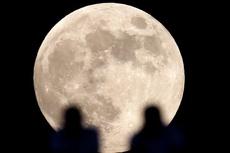 Сегодня ночью земляне смогут увидеть «Супер-Луну»