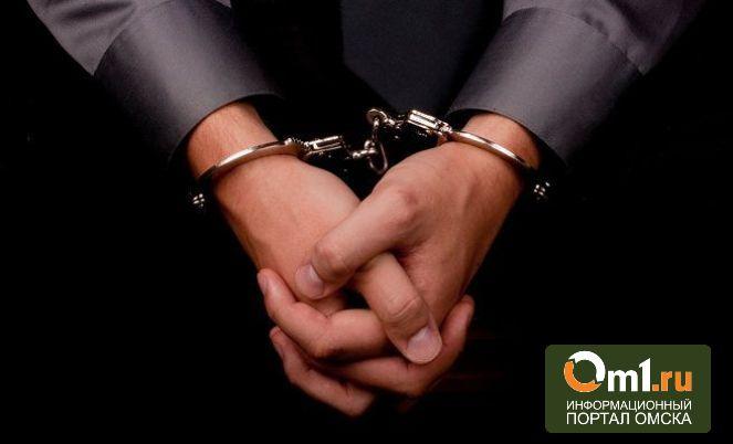 В Омске задержали пятерых мужчин, изнасиловавших девушку