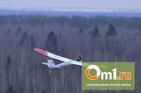 В Омской области уже 300 человек и беспилотник ищут 7-летнего Колю Кукина