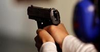 В Омске двухлетний ребенок прострелил себе ногу