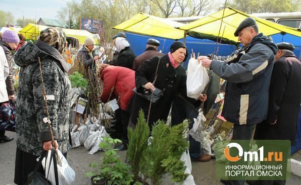 В Омске открывается ярмарка «Весенний сад»
