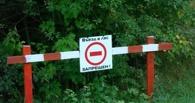 С сегодняшнего дня омичам запретили выезжать в лес на пикники