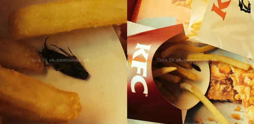 Таракан в картошке фри: омичка пожаловалась на KFC
