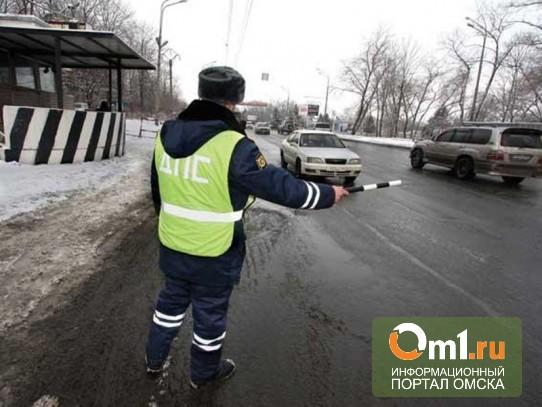 Под Новосибирском охотник застрелил инспектора ДПС