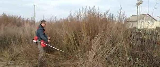 Власти Омской области селили многодетные семьи на участки без коммунальных удобств