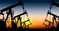 ОАЭ обвинили в обвале цен на нефть страны, не входящие в ОПЕК