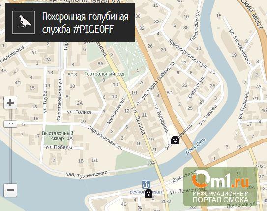 В Омске открылась «Похоронная служба голубей»