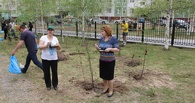 В Омске перед юбилеем проведут общегородской субботник