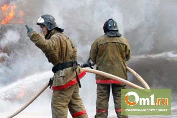 В Омской области прохожие спасли из горящего дома ребенка