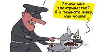 «МРСК Сибири», включившая в тариф на свет свои корпоративы, не простит долги «Омскэлектро»