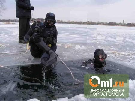Следующей зимой в Омской области соорудят инновационные ледовые переправы