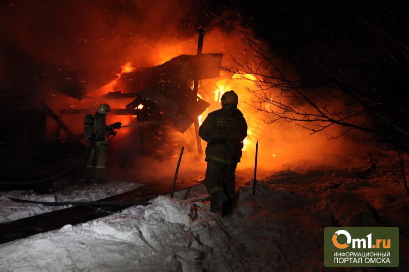 В Омском районе в огне сгорели 60 кур и 14 свиней