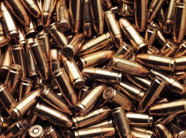 В Омской области сторож нашел в дачном поселке патроны от пистолета