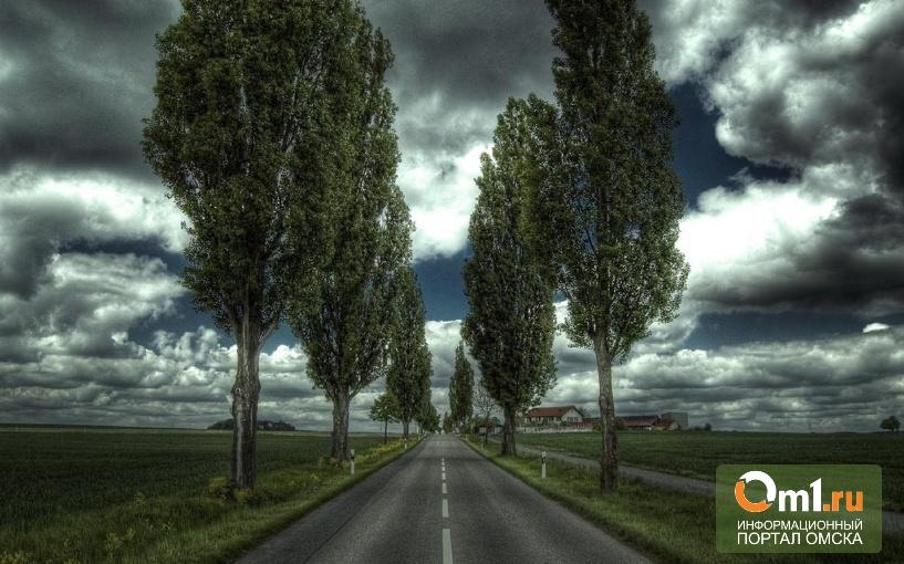 В Омской области построили две сельские дороги