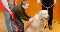 Омская чиновница Вижевитова предложила официально признать лечение собаками методом реабилитации