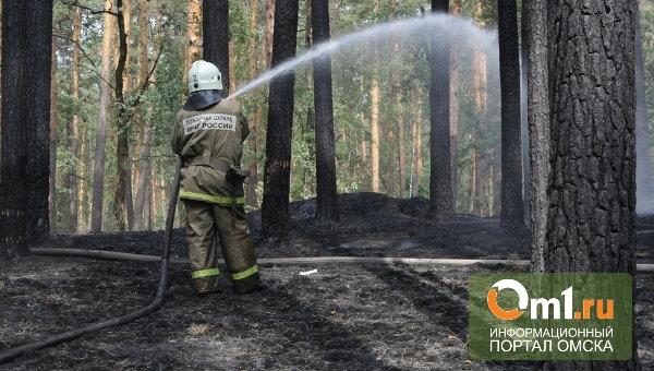 В районах Омской области начали снимать режим ЧС