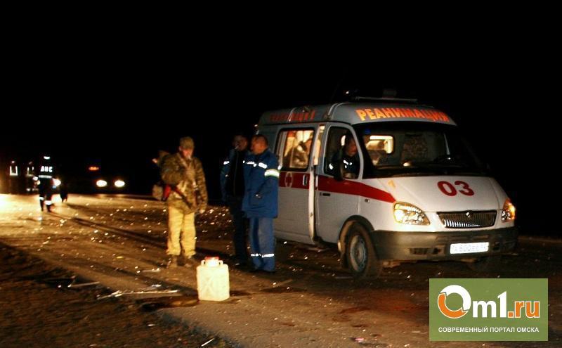 Под Омском пьяный водитель бросил приятелей умирать в разбитой машине
