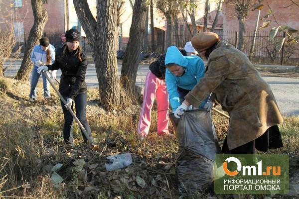 В Омске наведут марафет на двухмесячнике чистоты