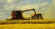 25 омских предприятий завершили уборку хлеба