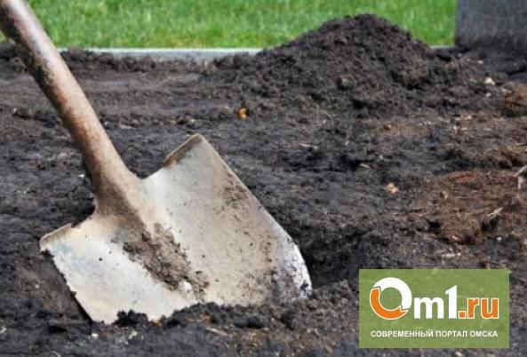 В Омской области убили и закопали подростка