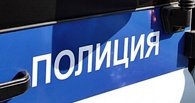 В Омской области задержали молодых омичей, обокравших сельский магазин