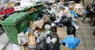Двораковский получил представление от прокуратуры за мусор на омских улицах