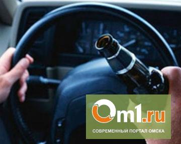 Пьяный водитель чуть не сбежал от инспекторов ДПС в Омске