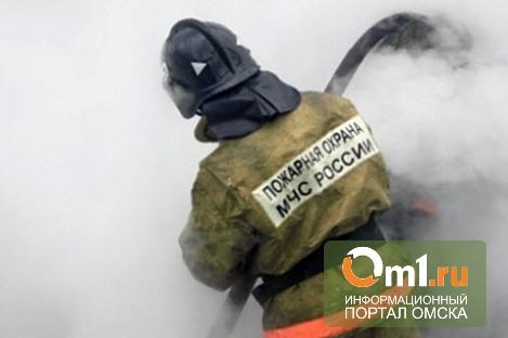 В Омской области мужчина погиб на пожаре из-за незатушенной сигареты