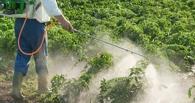 В Омском районе предприятие сжигало в поле ядовитую тару