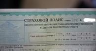 В следующем году в России останется всего 200 страховых компаний