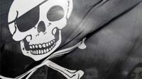 В антипиратский закон собираются включить музыку, изображения и книги
