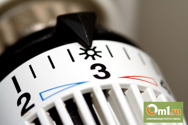 Домовой счетчик тепла в Омске будет стоить от 130 до 160 тысяч рублей