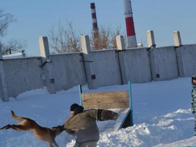 Омским студентам показали, как работают сотрудники вневедомственной охраны