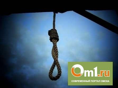 В Омске в летнем домике повесился 17-летний подросток