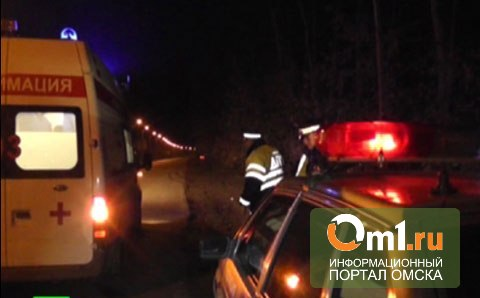 В Омской области полицейский с семьей на ВАЗе врезался в КаМАЗ
