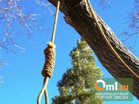 Омские следователи: Покончивший с собой подросток сильно скучал по матери