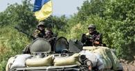 Служба безопасности Украины сообщила о том, что задержала омича-«террориста»