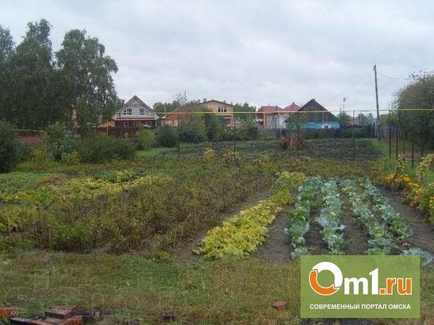 Омскую мэрию обвиняют в незаконной продаже земель напротив ТЦ «МЕГА»