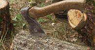 За украденный топор омичи могут лишиться свободы до семи лет